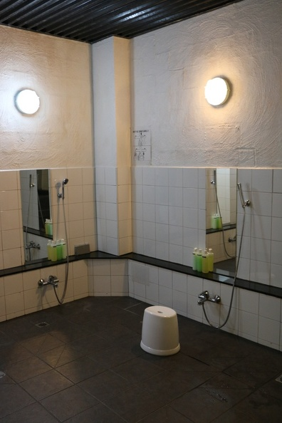 Showering area (downstairs)